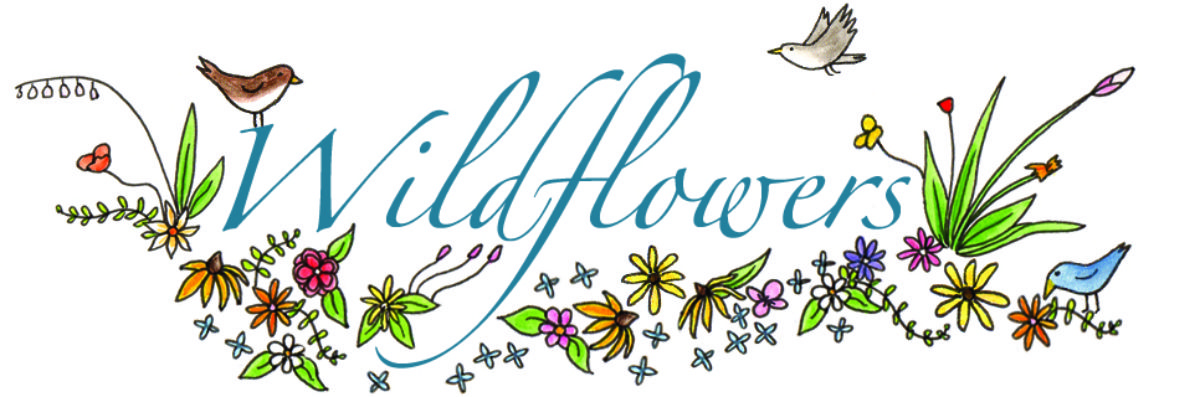 Wildflowers Faith